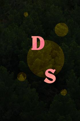 Bleuete-Experience-DS-WP